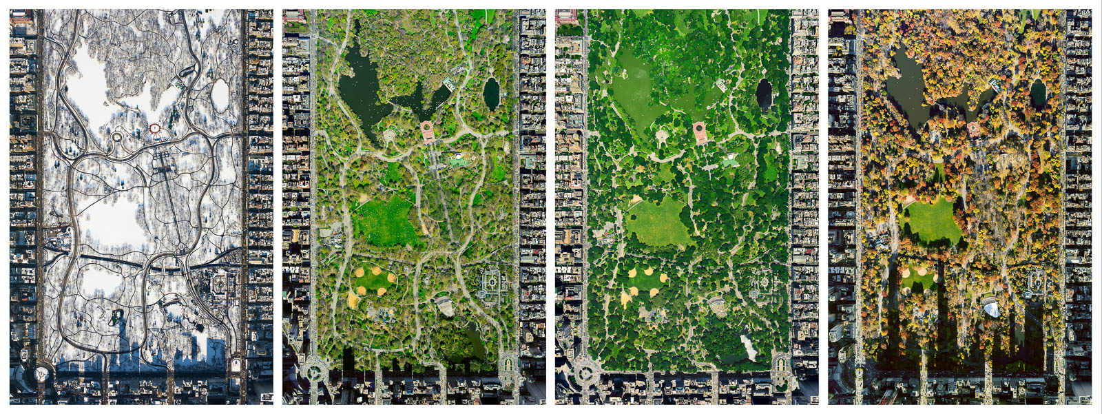 Central Park from 10,000 feet (Set)