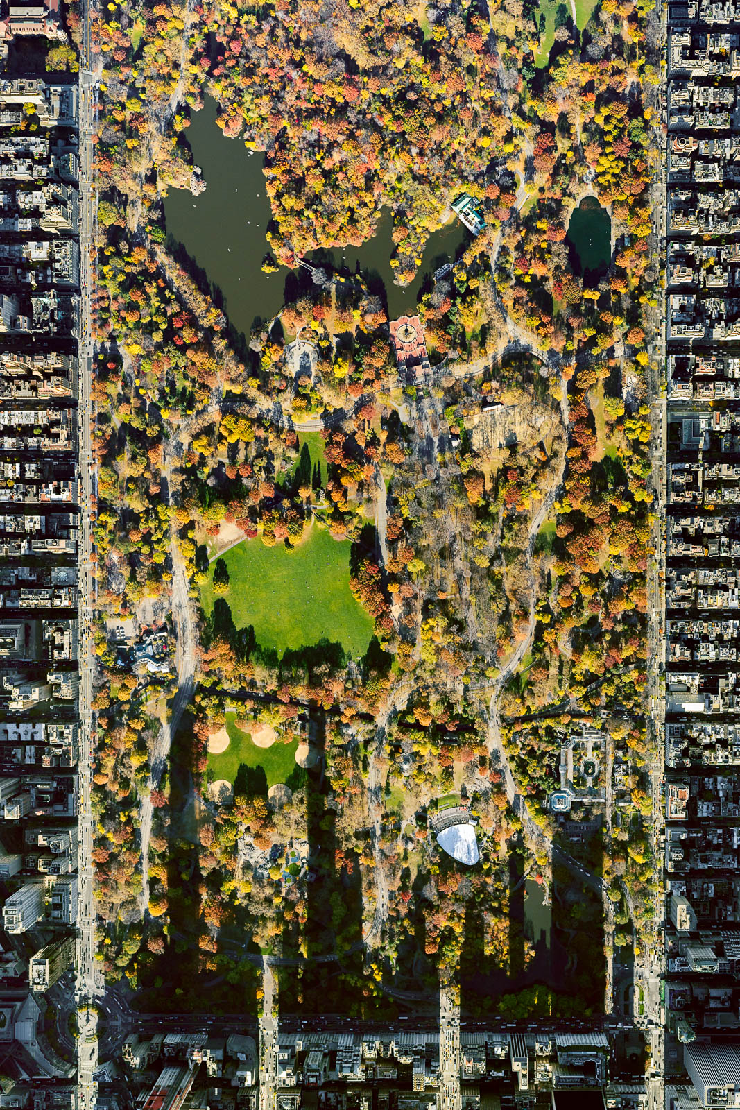 Central Park from 10,000 feet (Autumn)